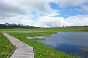 2012.6.24雨竜沼 045